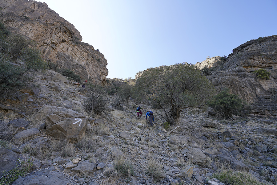 track absent in hajar mountains