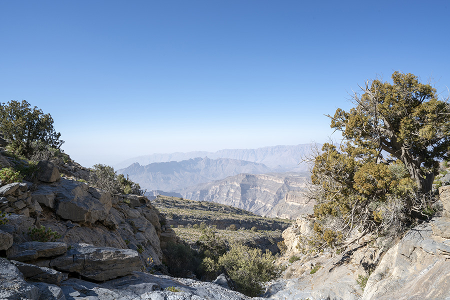 View north from hajar mountains